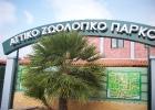 Επίσκεψη στο Αττικό Πάρκο (Σχ. έτος 2010-2011)